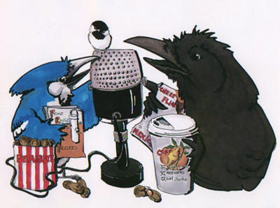 Bird Talk Logo